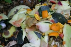 jpm_garden_compost_matter