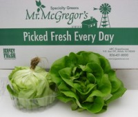 Mr. McGregor's Greens and Herbs